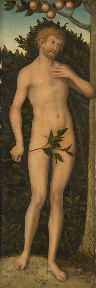 Adam - Adam, Lucas Cranach the Elder