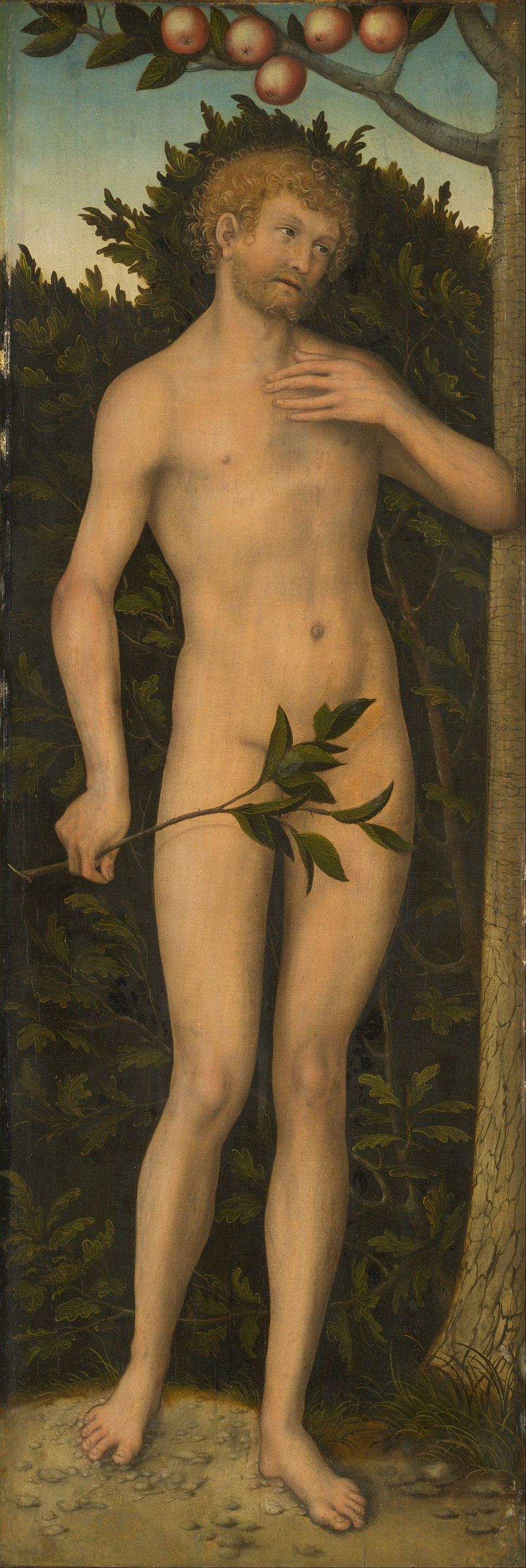 Lucas Cranach the Elder - Adam - Google Art Project