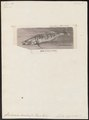 Lucioperca sandra - - Print - Iconographia Zoologica - Special Collections University of Amsterdam - UBA01 IZ12900107.tif