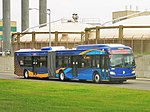MTA Bus Company New Flyer Xcelsior XD60 5391 (2016 livery).jpg