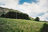 MT Buffalo Jump sd.jpg