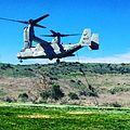MV-22B Osprey.jpg