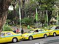 Madeira em Abril de 2011 IMG 1703 (5663735658).jpg