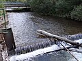 Malužiná potok NT8.jpg