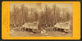 Maple sugar works of S. & E. Morse, Montpelier, Vt, by C. H. Freeman 6.png