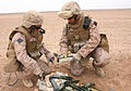 Marines destroy unserviceable ammunition DVIDS154198.jpg