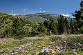 Massif du Carlit - panoramio (1).jpg