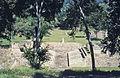 Mexico1980-130 hg.jpg