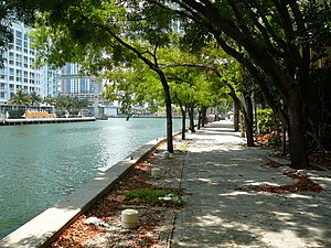 Miami-Dade County, Florida - Miami River in Downtown Miami