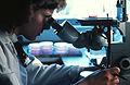 Microscope (inverted).jpg