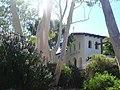 Mission at San Luis Obispo (10376482044).jpg