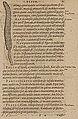 Monardes - 1574 - De simplicibus medicamentis - UB Radboud Uni Nijmegen - 208278206 71 piper.jpg