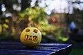 Monster (22170882825).jpg