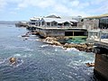 Monterey Bay Aquarium, California, USA - panoramio.jpg
