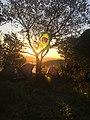 Morro Ipanema.jpg