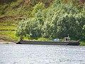 Motorboat by Verkhnaya Dvina, Kotlas - Toima - panoramio (43).jpg