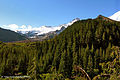 Mount Rainier National Park, Washington (23294351266).jpg