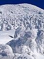 Mt.Hakkoda (八甲田の樹氷) - panoramio.jpg