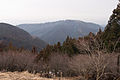 Mt.Takao 04.jpg