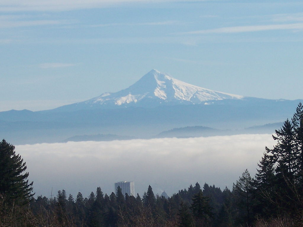 File Mt Hood Seen From Mount Calvary Cemetery Portland