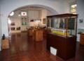 Museucarris003.png