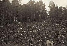 Foto de tierra deforestada
