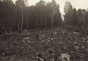 Slash-and-burn - Slash-and-burn in Småland, Sweden (1904)