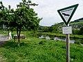 NSG Bestwiger Ruhrtal fd (3).jpg