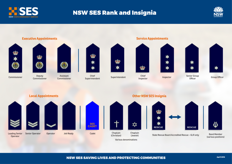 NSW SES Rank Insignia.png