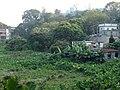 Nam Shan Village to Sai Kung Town (4) - panoramio.jpg