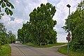Naturdenkmal Lindenreihe und Grubbank, Kennung 82350290007, Gechingen 07.jpg