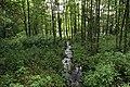 Nature reserve Libouchecké rybníčky in summer 2014 (2).JPG