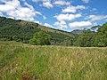 Near Loch Chon - geograph.org.uk - 1356582.jpg