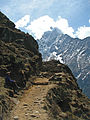 Nepal - Sagamartha Trek - 040 - Trail disappearing around corner (497640239).jpg