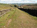 Nether Lane on the Kirklees Way - geograph.org.uk - 503169.jpg