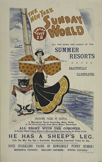New York World - Advertising poster for the July 28, 1895, New York Sunday World