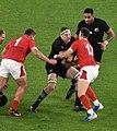 New Zealand national rugby 20191101b13.jpg