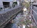 Nikaryo-yosui canal , Musashi-Kosugi , Kawasaki - panoramio (2).jpg