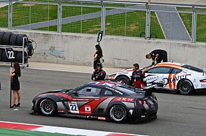 Nissan GT-R GT1 and Aston Martin DBR9 starting grid Silverstone 2011.jpg