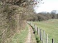 North Downs Way near Brabourne - geograph.org.uk - 392053.jpg