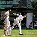 Nuthurst CC v. The Royal Challengers CC at Mannings Heath, West Sussex, England 26 cropped.jpg