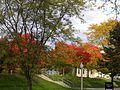 OWU Campus.jpg
