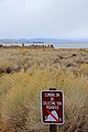 Obey the sign - Flickr - daveynin.jpg