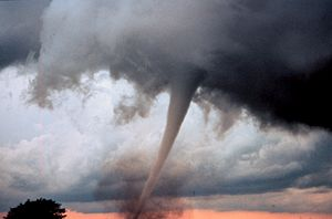 Wind - An occluded mesocyclone tornado (Oklahoma, May 1999)