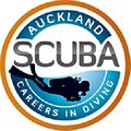 Offering for Padi Instructor Courses in NZ at Low Price.jpg