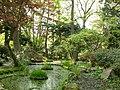 Ogród w Przelewicach.jpg