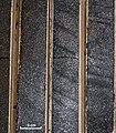 Oilsand Drill Cores.jpg