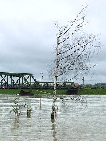 File:Oppeln - flood 2010.jpg