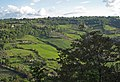 Orvieto greenValley 2560.jpg