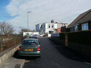 Sheriff Hill - Housing in the Egremont Estate